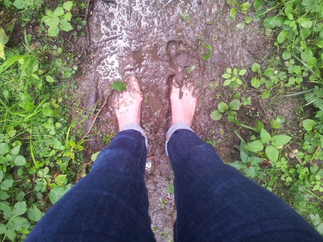 walking the wet wild woods